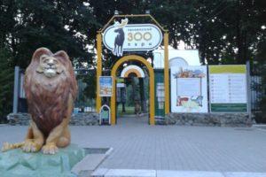 """Пензенский зоопарк впервые приглашает на """"ночную"""" прогулку"""