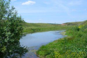 В реке Уза в Пензенской области утонул мужчина