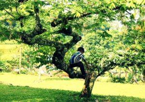 В Пензе спасатели помогли мальчику спуститься с дерева