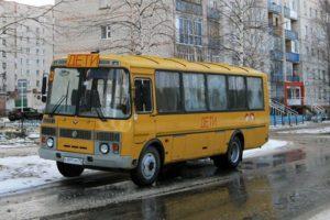 """Школьные автобусы в Пензенской области станут """"культурными"""""""
